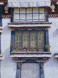 Occupied Part of Drepung Lamasery (Monastery), Tibet, China, Asia Photographic Print by Peter Ryan