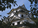 Hikone-Jo (Hikone Castle), Hikone, Japan, Asia Photographic Print by David Poole