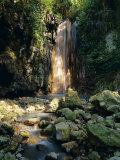 Diamond Falls, St. Lucia, Windward Islands, Caribbean, West Indies, Central America Photographic Print by Lee Frost