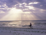 Fisherman Cycling Along the Beach Near Bweju Against Dramatic Sky, Island of Zanzibar, Tanzania Photographic Print by Lee Frost