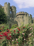 Warwick Castle, Warwick, Warwickshire, England, UK, Europe Photographic Print by G Richardson
