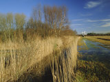 Wicken Fen, Wicken, Near Ely, Cambridgeshire, England, UK, Photographic Print