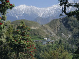 Gaddi Village, Dhaula Dhar Range, Western Himalayas, India, Asia Photographic Print by David Poole