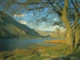Llyn Gwynant (Lake Gwynant), Gwynedd, North Wales, UK, Europe Photographic Print by Lee Frost