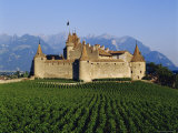 Aigle Chateau and Vineyard, Near Lac Leman, Switzerland Photographic Print by Adina Tovy