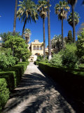 The Gardens of the Reales Alcazares (Alcazar), Seville, Andalucia (Andalusia), Spain, Europe Photographic Print by Ruth Tomlinson