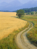 Winding Track, High Tatra Range, Poprad, Slovakia, Europe Photographic Print by Upperhall Ltd