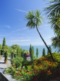 Tropical Gardens, Mainau Island, Lake Constance, Baden-Wurttemberg, Germany, Europe Photographic Print by Ruth Tomlinson