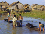 Children Riding Water Buffaloes, Inle Lake, Myanmar, Asia Photographic Print by Upperhall Ltd