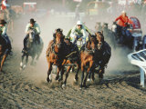 Chuck Wagon Race, Calgary Stampede, Alberta, Canada Photographic Print by Paolo Koch
