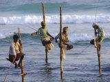 Stilt Fishermen, Weligama, Sri Lanka, Asia Photographic Print by Upperhall Ltd