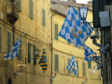 Flags of the Onda (Wave) Contrada in the Via Giovanni Dupre, Siena, Tuscany, Italy, Europe Photographic Print by Ruth Tomlinson