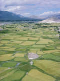 The Indus Valley from the Monastery at Thikse (Tikse), Ladakh, India, Asia Photographic Print by Jj Travel Photography