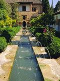 Generalife Gardens, the Alhambra, Granada, Andalucia, Spain, Europe Fotodruck von Steve Bavister