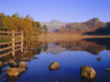 View Across Blea Tarn to Langdale Pikes, Lake District, Cumbria, England, UK Autumn Photographic Print by Ruth Tomlinson