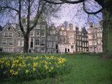 Begijnhof, Amsterdam, Holland (The Netherlands), Europe Fotografie-Druck von I Vanderharst