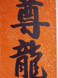 Close-up of Chinese Calligraphy at a Temple, Stanley, Hong Kong, China, Asia Photographic Print by Amanda Hall