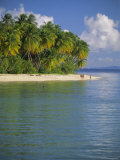 Beach at Pigeon Point on the Southwest Coast of the Island, Tobago, Caribbean, West Indies Photographic Print by Louise Murray