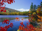 Fall Colours, Moose Pond, with Mount Pleasant in the Background, Maine, New England, USA Fotografisk tryk af Roy Rainford