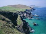 Coastline at Slea Head, Dingle Peninsula, County Kerry, Munster, Republic of Ireland (Eire), Europe Photographic Print by Roy Rainford