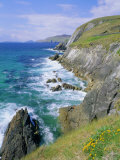 Slea Head, Dingle Peninsula, County Kerry, Munster, Republic of Ireland (Eire), Europe Photographic Print by Roy Rainford