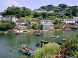 Noss Mayo, South Coast, Devon, England, UK Photographic Print by Roy Rainford