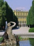 Naiad Fountain, Schonbrunn, Unesco World Heritage Site, Vienna, Austria, Europe Fotografisk tryk af Roy Rainford