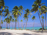 Dominican Republic, Punta Cana, West Indies Photographic Print by Jeremy Lightfoot
