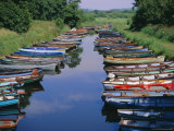 Boats, Killarney, County Kerry, Munster, Republic of Ireland (Eire), Europe Photographic Print by Firecrest Pictures