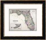 Florida Framed Giclee Print