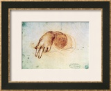 Study of a Hand Framed Giclee Print by  Leonardo da Vinci