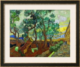 The Garden of St. Paul&#39;s Hospital at St. Remy, c.1889 Framed Giclee Print by Vincent van Gogh