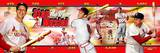 Stan Musial Panoramic Photo Photo