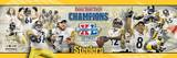 Super Bowl  XL- Pittsburgh Steelers Photo