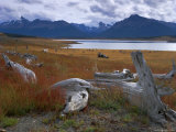 Lake Roca, Calafate Roca National Reserve, Patagonia, Argentina, South America Photographic Print by Derek Furlong