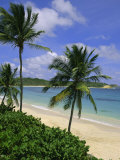 Palm Trees and Beach, Half Moon Bay, Antigua, Leeward Islands, Caribbean, West Indies Photographic Print by John Miller