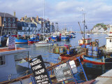 Weymouth, Dorset, England Photographic Print by Rob Cousins