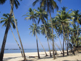 Palm Fringed Beach, Goa, India Photographic Print by Michelle Garrett