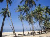 Palm Fringed Beach, Goa, India Photographic Print by Michelle Garrett