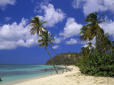 Darkwood Beach, Antigua, Leeward Islands, Caribbean, West Indies, Central America Photographic Print by John Miller