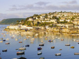 Salcombe, Devon, England Photographic Print by Rob Cousins