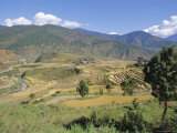 Terraces on Hillsides, Thimpu, Bhutan Photographic Print by Alison Wright