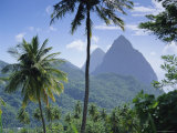 The Pitons, St. Lucia, Caribbean, West Indies Photographic Print by John Miller