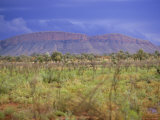 Landscape Around Paunya, Northern Territory, Australia Photographic Print by Claire Leimbach