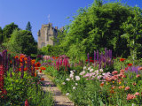 Herbaceous Borders in the Gardens, Crathes Castle, Grampian, Scotland, UK, Europe Photographic Print by Kathy Collins