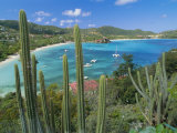 Cactus Plants and Bay of St. Jean, St. Barthelemy, Caribbean, West Indies, Central America Photographic Print by Fred Friberg