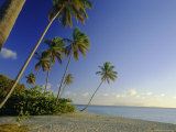Darkwood Beach, Antigua, Caribbean, West Indies Photographic Print by John Miller