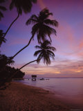 Pigeon Point, Tobago, Caribbean, West Indies Photographic Print by John Miller