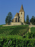 Church and Vineyards, Hunawihr, Alsace, France, Europe Photographic Print by John Miller