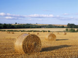 Agricultural Landscape with Straw Bales in a Cut Wheat Field Photographic Print by Nigel Francis